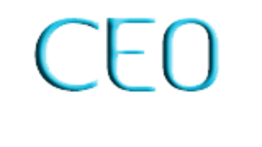 CEO Transportation